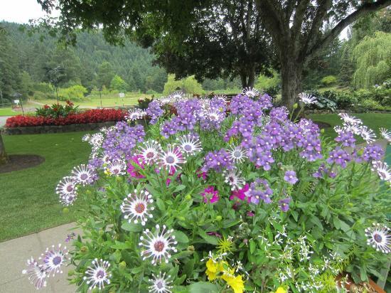 The Butchart Gardens: Vista del jardín