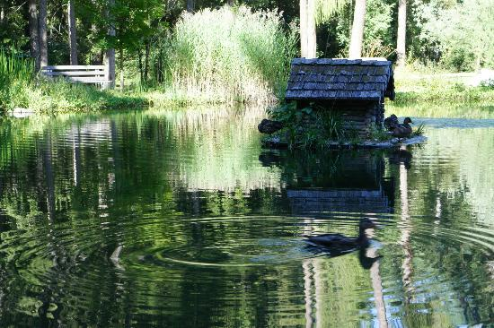 Villabassa, Ιταλία: Laghetto del Parco, con casetta delle anatre