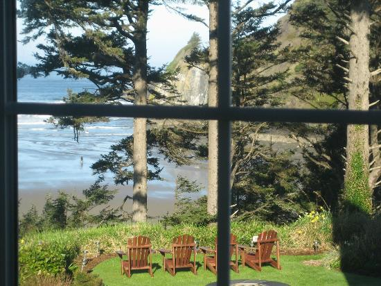 Ocean House Bed and Breakfast: View from the side window of the Sea Rose room.