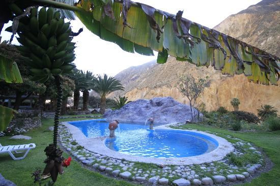 oasis sangalle: Pool