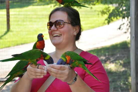 ‪‪Kentucky Down Under Adventure Zoo‬: Feeding the birds