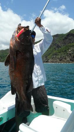 Papagayo Gulf Sport Fishing - North Pacific Tours : Casting with Poppers - Papagayo Gulf
