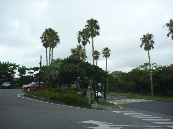 Hotel Hana: ホテル前の道路