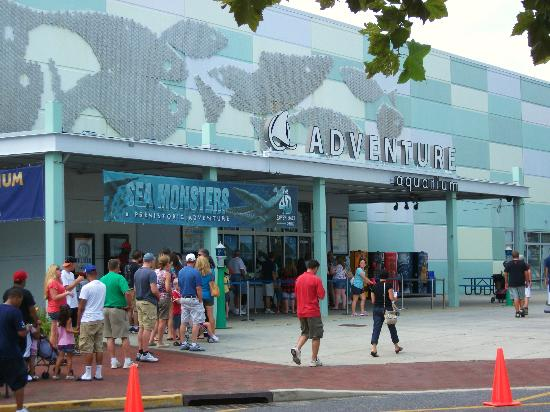 Adventure Aquarium: Buy your tickets at home or you'll be dealing with lines like this!