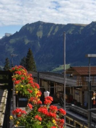 Eiger Guesthouse: View from Balcony