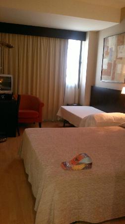 Spa Hotel Ciudad de Teruel : habitacion