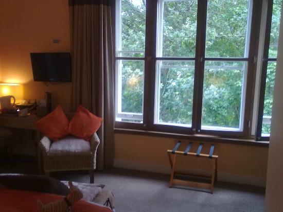 Spot in the Woods: Huge bedroom window