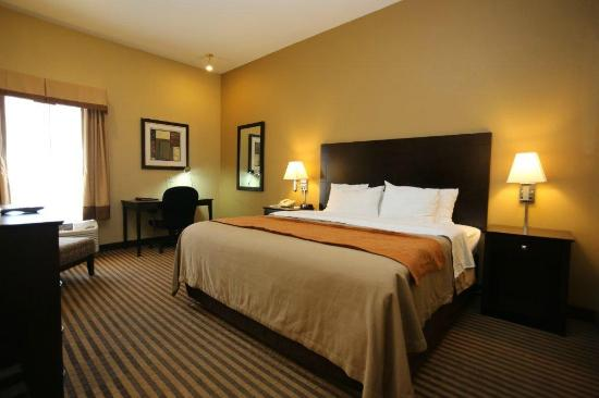 Comfort Inn Airport Turfway Road: King Room