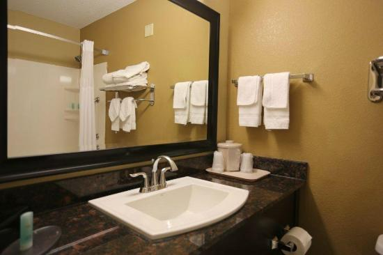 Comfort Inn Airport Turfway Road: Guest Bathroom