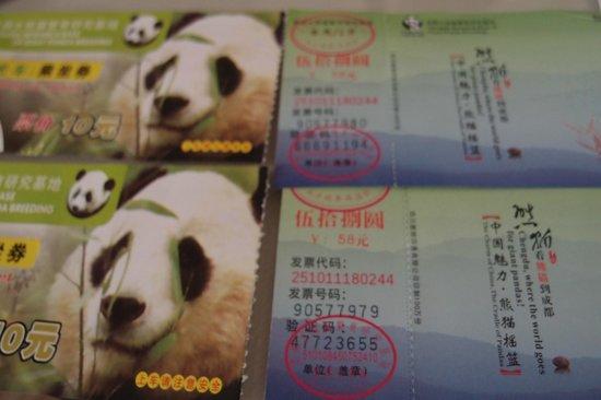 Giant Panda Breeding Research Base (Xiongmao Jidi): Admission tickets