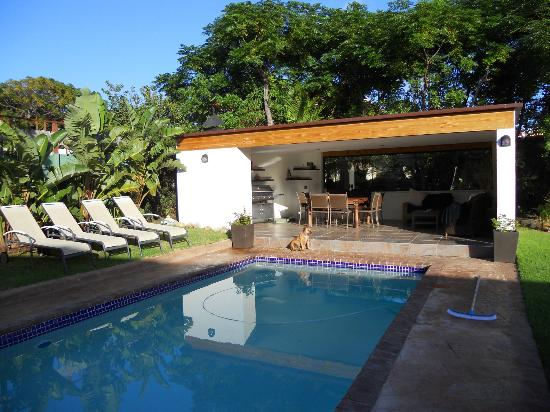 Eltham Lodge: Pool and Braai area