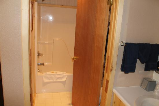 Creede Snowshoe Lodge : The bathroom, small but clean, with great water pressure.