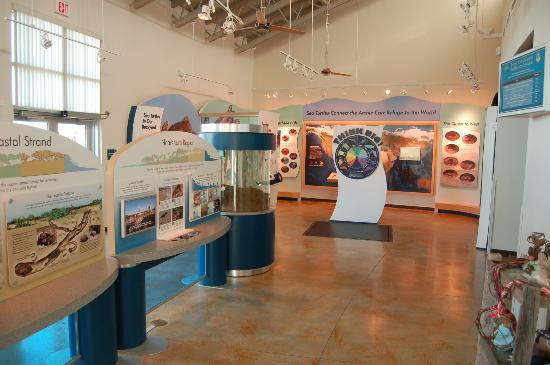Barrier Island Center : Interactive Exhibit Hall with Aquariums