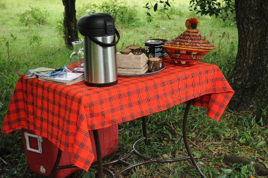 Enkerende Tented Camp: Pic Nic