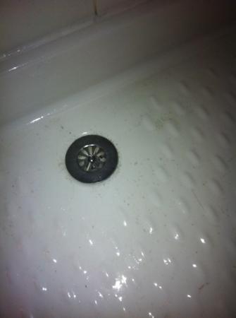 Hotel Agora: capelli e sporco in doccia, appena uscite le signorine delle pulizie