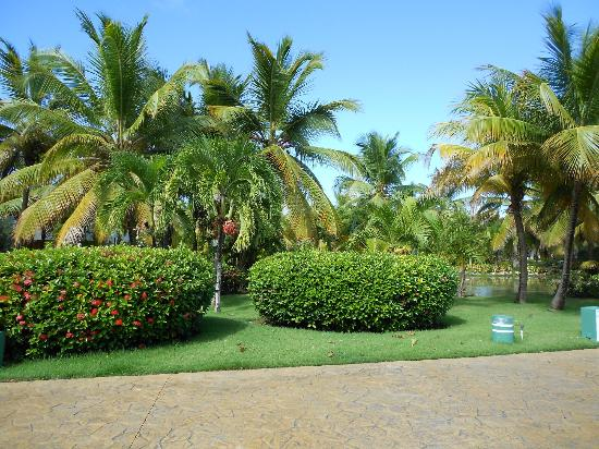 Grounds - Picture of Melia Caribe Tropical All Inclusive ...