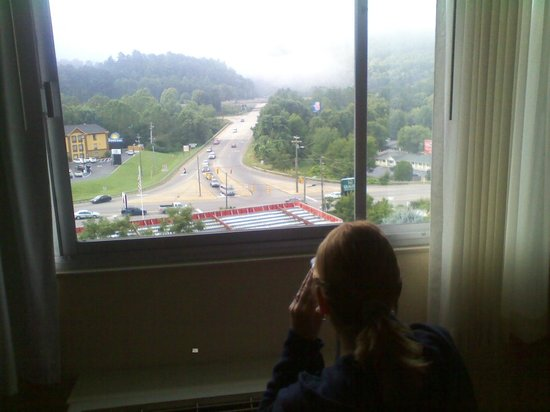 Holiday Inn Asheville - Biltmore East: 4th floor veiw