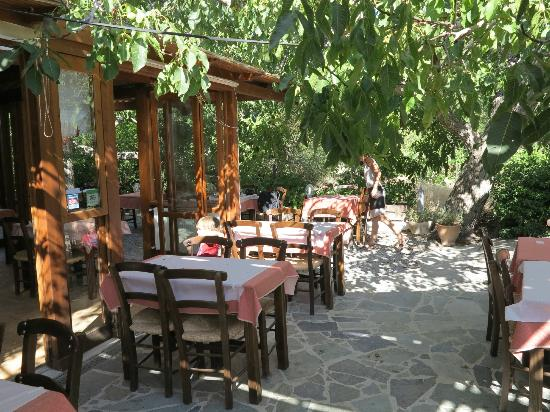 Taverna Kares: Under the trees