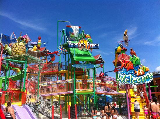 water park - Picture of Coco Key Hotel and Water Park ... Funny Bad Hotel Reviews