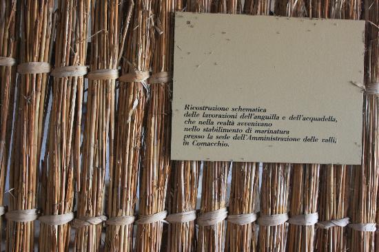 Trappola per le anguille picture of valli di comacchio for Buono per servizi turistici