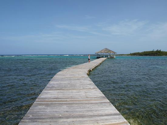 Barefoot Cay Resort & Spa: Palapa