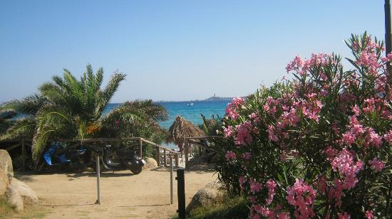 Residence Fenicia : la discesa in spiaggia