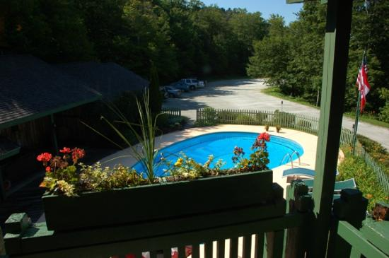 Lotus Lodge Inn: Pool and parking lot