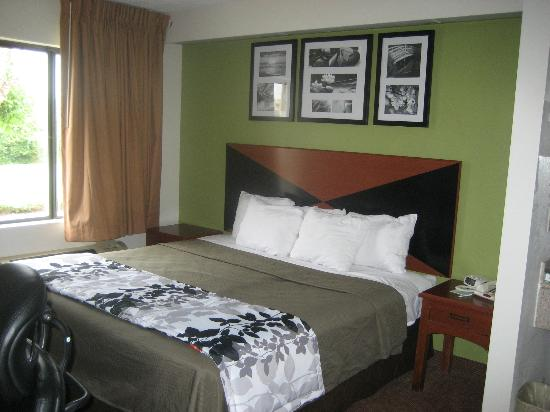 Sleep Inn North Knoxville: Room with single King Bed