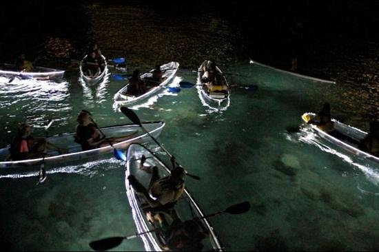 Clear Discoveries Tour :                                     night kayaks