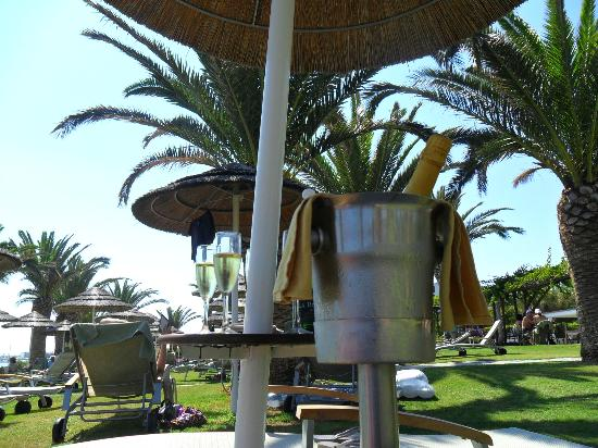 Alion Beach Hotel : Champagne in the gardens!