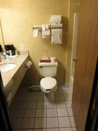 Days Inn & Suites Vancouver: washroom