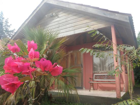 Cabinas Bella Vista : jardin