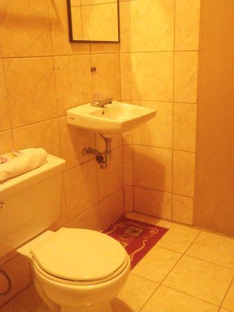 Cabinas Bella Vista : baño