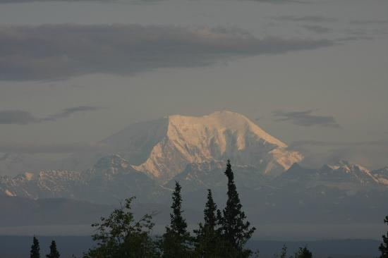 Talkeetna Alaskan Lodge : Room View