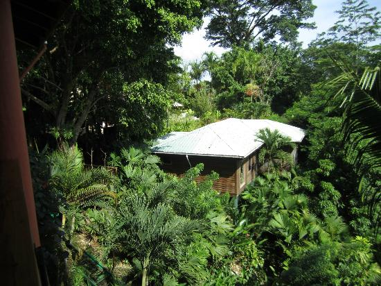Belcampo Lodge: A lodge nestled in the forest!