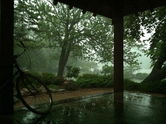 a rainy day at the Osaka gardens - Picture of Jackson Park\'s ...