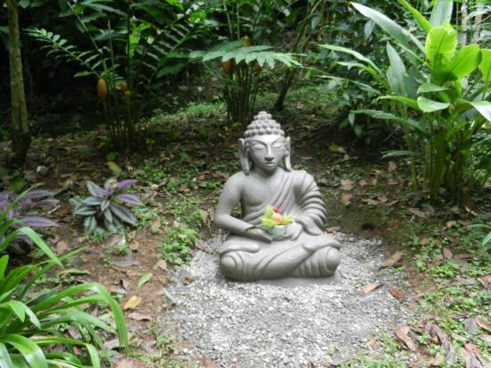 Samasati Retreat & Rainforest Sanctuary: One of many beautiful statues