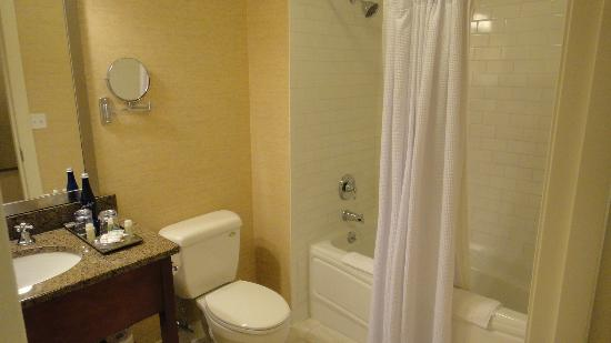Fairfield Inn & Suites Albany Downtown: Bathroom