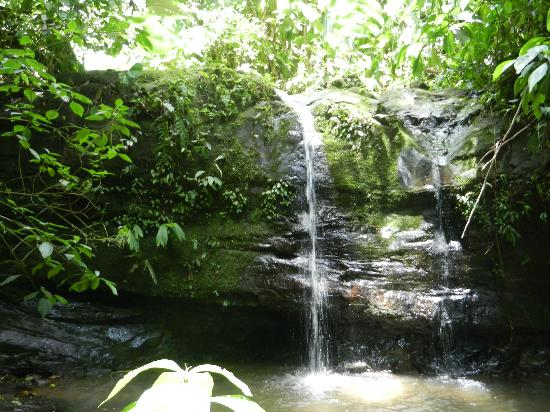 Samasati Retreat & Rainforest Sanctuary: waterfall trek