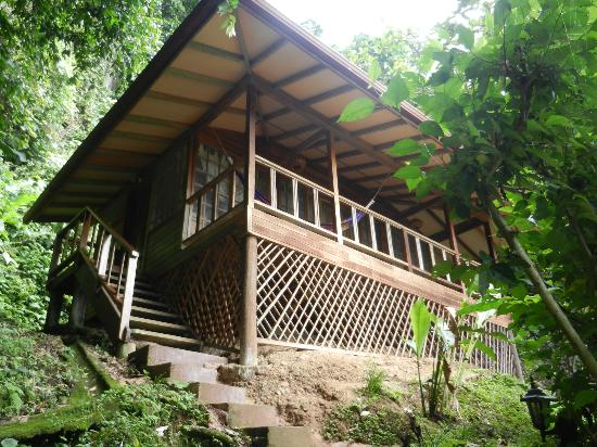 Samasati Retreat & Rainforest Sanctuary: bungalow #6