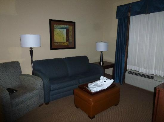 Homewood Suites by Hilton Fayetteville: Living Room