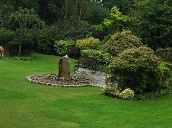 Singleton Lodge Country House Hotel: Grounds at the front of the hotel