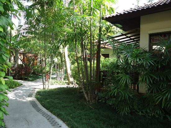 Baan Chaweng Beach Resort & Spa: gardens