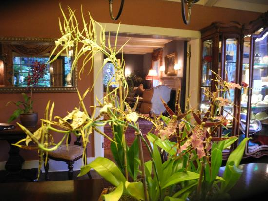 Simpson House Inn: Elegant interior, live orchids in all rooms.