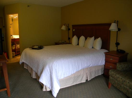 Hampton Inn Memphis-Poplar: Bedroom