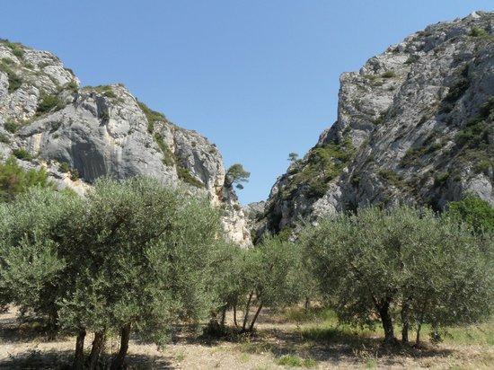 Merindol, فرنسا: L'entrée des Gorges du Régalon à Mérindol / Cheval Blanc 