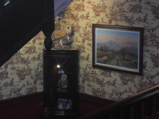 Strathpeffer Hotel: On the way to the first floor