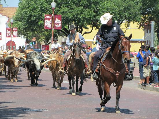 national stock yards women Junior livestock auction the national western wild west show will take you on a the wine and roses event of the national western stock show.