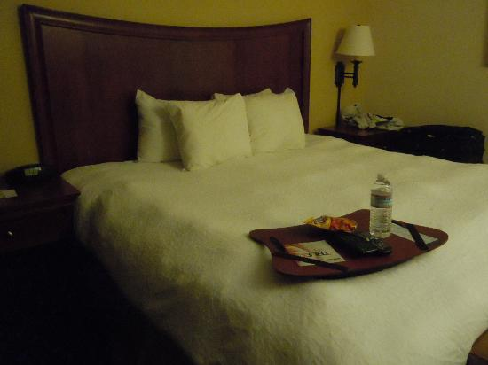 Hampton Inn Virginia Beach-Oceanfront South: Bed faces the balcony
