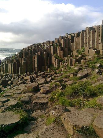 Teach an Cheoil B&B: Giant's Causeway